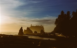 Sea, coast, rocks, dusk