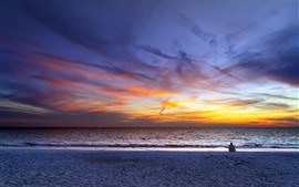 Preview wallpaper Sea, sunset, sky, clouds, beach, people