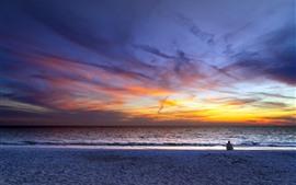 壁紙のプレビュー 海、夕日、空、雲、浜、人々