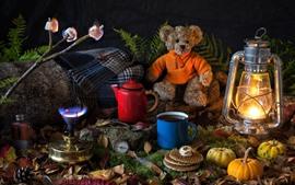 Nature morte, citrouille, jouet ours, café, lampe
