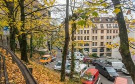 Швейцария, Женева, осень, деревья, листья, город, дома