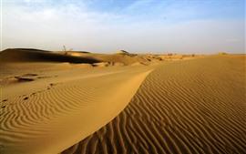 Пустыня Такламакан, дюна