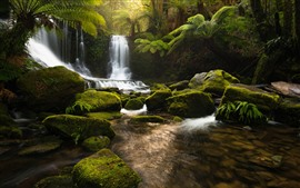 Preview wallpaper Tasmania, Australia, waterfall, rocks, moss