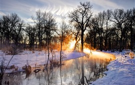 Preview wallpaper Trees, snow, river, sun rays, morning, winter