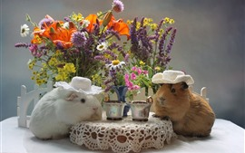 Preview wallpaper Two guinea pigs drink coffee, funny animal, flowers