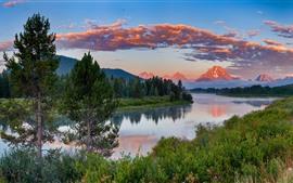미리보기 배경 화면 미국, 그랜드 티튼 국립 공원, 호수, 나무, 산