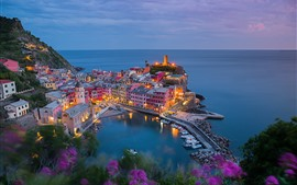 Preview wallpaper Vernazza, Italy, city, pier, houses, lights, top view