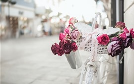 Preview wallpaper White bike, basket, pink and red roses