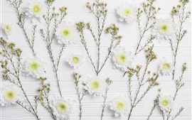 Preview wallpaper White chrysanthemum, wood board