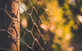 Preview wallpaper Wire fence, glare, hazy