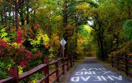 Aperçu fond d'écran Automne, route, arbres, clôture