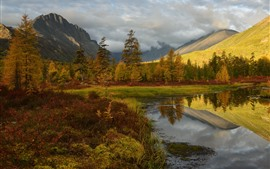 Outono, árvores, declive, lagoa, nuvens