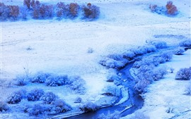 Preview wallpaper Bashang grassland, winter, snow, trees, river