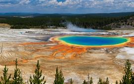 Belo Parque Nacional de Yellowstone, floresta, lago, EUA