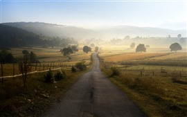 Bosnia and Herzegovina, road, morning, fog