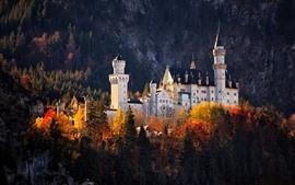 Замок, деревья, осень, Германия