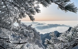 Preview wallpaper China, Huangshan Mountains, pine, frost, snow, winter
