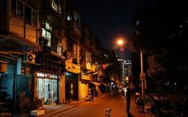 City night, street, houses, lights, Shanghai, China