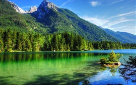 Clear water, lake, trees, mountains, summer