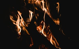 Preview wallpaper Fire, flame, firewood
