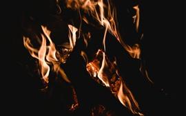Fire, flame, firewood