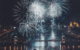 Fuegos artificiales, río, puente, ciudad, noche.