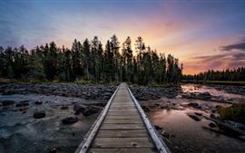 미리보기 배경 화면 숲, 다리, 바위, 강, 황혼