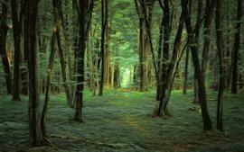 森林,樹木,綠色,藝術風格