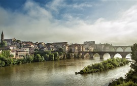Francia, Albi, ciudad, río, puente, casas, mañana, niebla