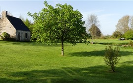 France, Normandie, Manche, trees, meadow, house