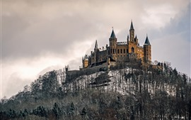 Germany, Castle Hohenzollern, trees, snow, winter