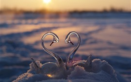 Preview wallpaper Glass swan toy, snow, love heart