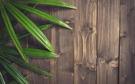 Hojas verdes, tablero de madera.