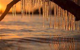 Carámbanos, agua, atardecer, invierno