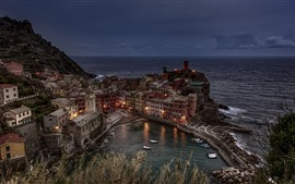 Italy, Vernazza, houses, lights, sea, night