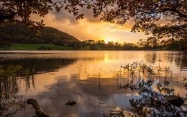 Озеро, деревья, закат, природа