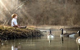 Preview wallpaper Little boy and ducks, water