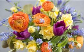 Muitos tipos de flores, coloridas