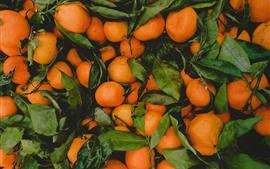 Preview wallpaper Many mandarins, fruit