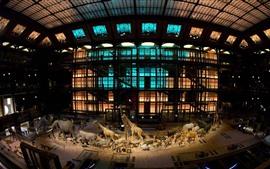 Museu Nacional de História Natural, Paris, França