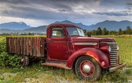 Old truck, fields