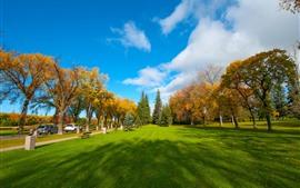 Парк, лужайка, деревья, осень, облака, голубое небо