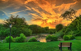 Park, trees, bench, lamp, clouds, pond, sunset