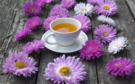 Pink and white asters flowers, one cup of tea