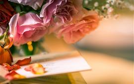 Rosas rosas, pétalos, libro, brumoso.