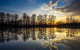 Poland, Silesia, trees, lake, water reflection, sunset