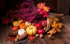 Pumpkin, pomegranate, nuts, flowers, still life