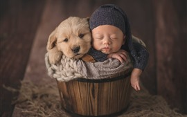 Puppy and baby sleep in bucket