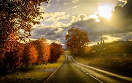 Road, trees, houses, autumn, sunset