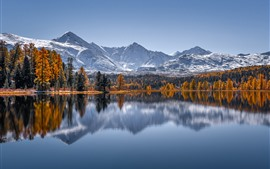Preview wallpaper Russia, The Altai Mountains, lake, water reflection, trees, autumn